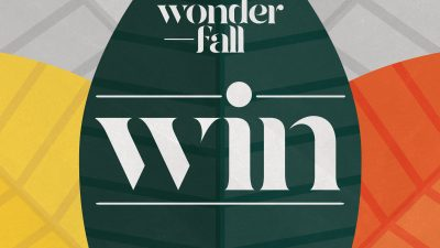 Marshes Wonder-Fall